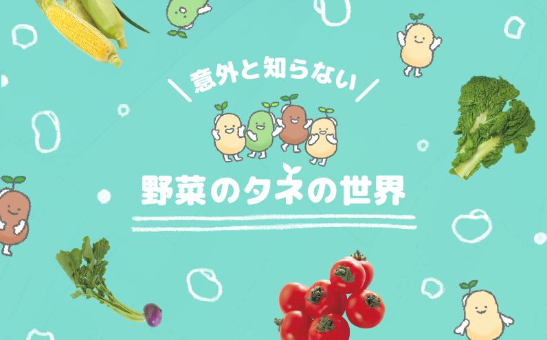 意外と知らない野菜の種の世界